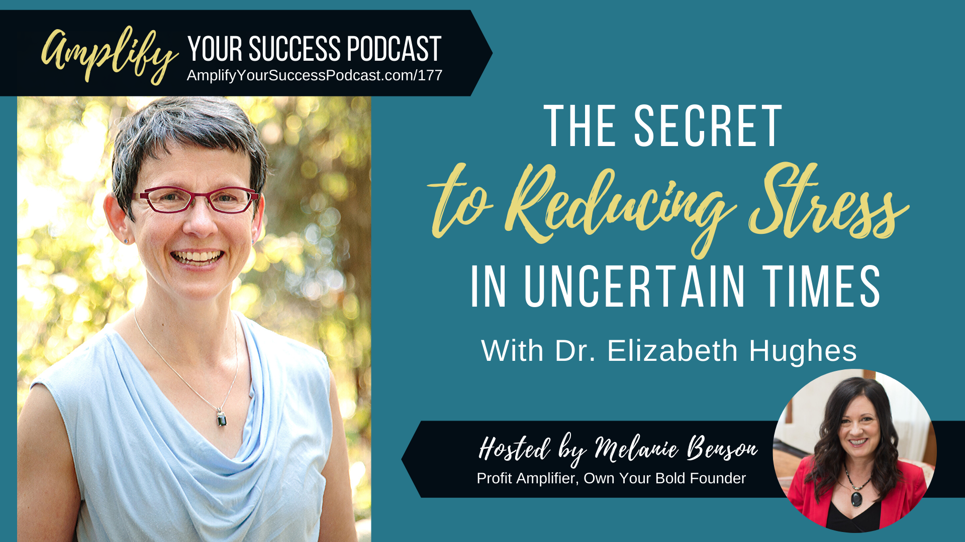 The Secret to Reducing Stress In Uncertain Times with Dr. Elizabeth Hughes on Amplify Your Success Podcast Episode 177 with Melanie Benson